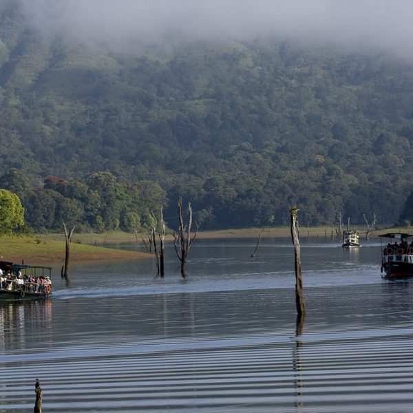 Munnar, Thekkady and Kochi – Mountain Trails Sightseeing Package Tour