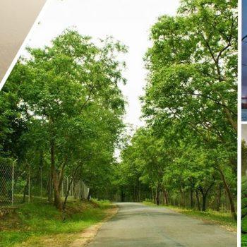 Valparai, Marayoor, Munnar and Kochi – Funday Scenic & Wildlife Package Tour