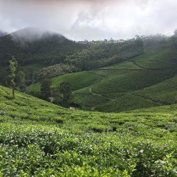 Incredible Kerala Package Tour