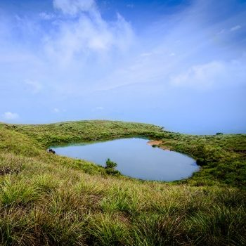 Bangalore, Mysore, Coorg, Wayanad, Ooty, Kochi & Alleppey Tour Package