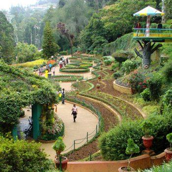 Ooty Botanical Gardens