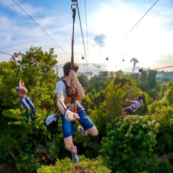 Ziplining In Singapore – An Escapade That Will Fill Your Heart With Merriment