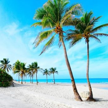 Awesome Goa Tour Package