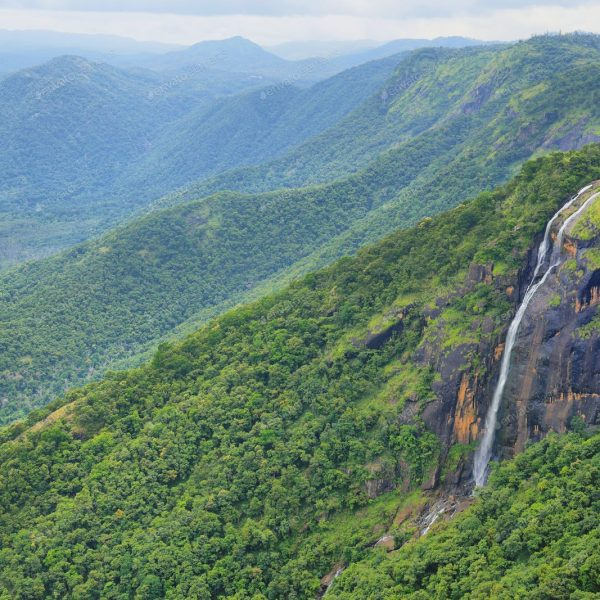 Must-see waterfalls in Thekkady that no one tells you about