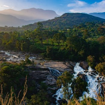 A complete guide to plan traveling in Kerala