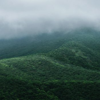 Why Plan Kerala Tour During The Monsoon Season?